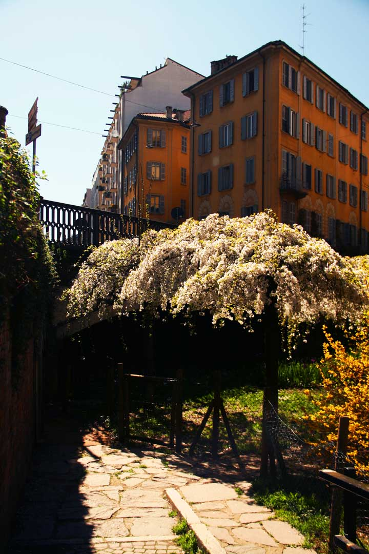 Il giardino segreto flawless milano the lifestyle guide - Il giardino segreto napoli ...