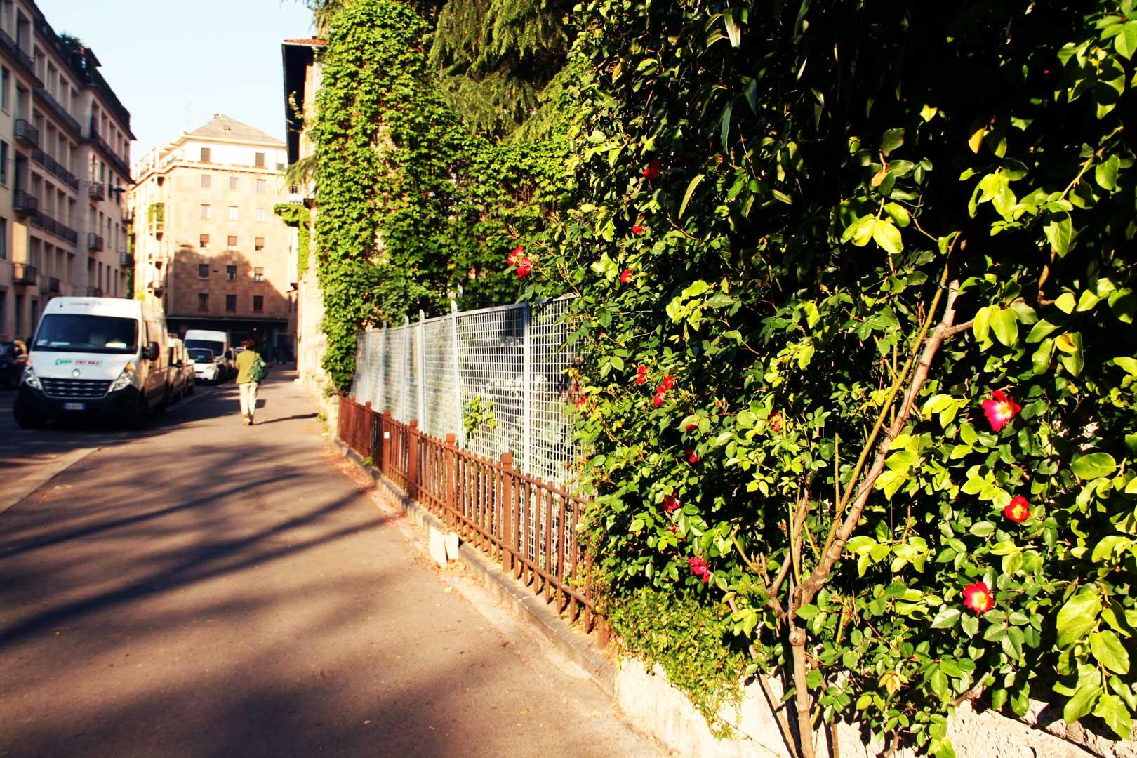 giardino-edibile-serbelloni-ringhiera