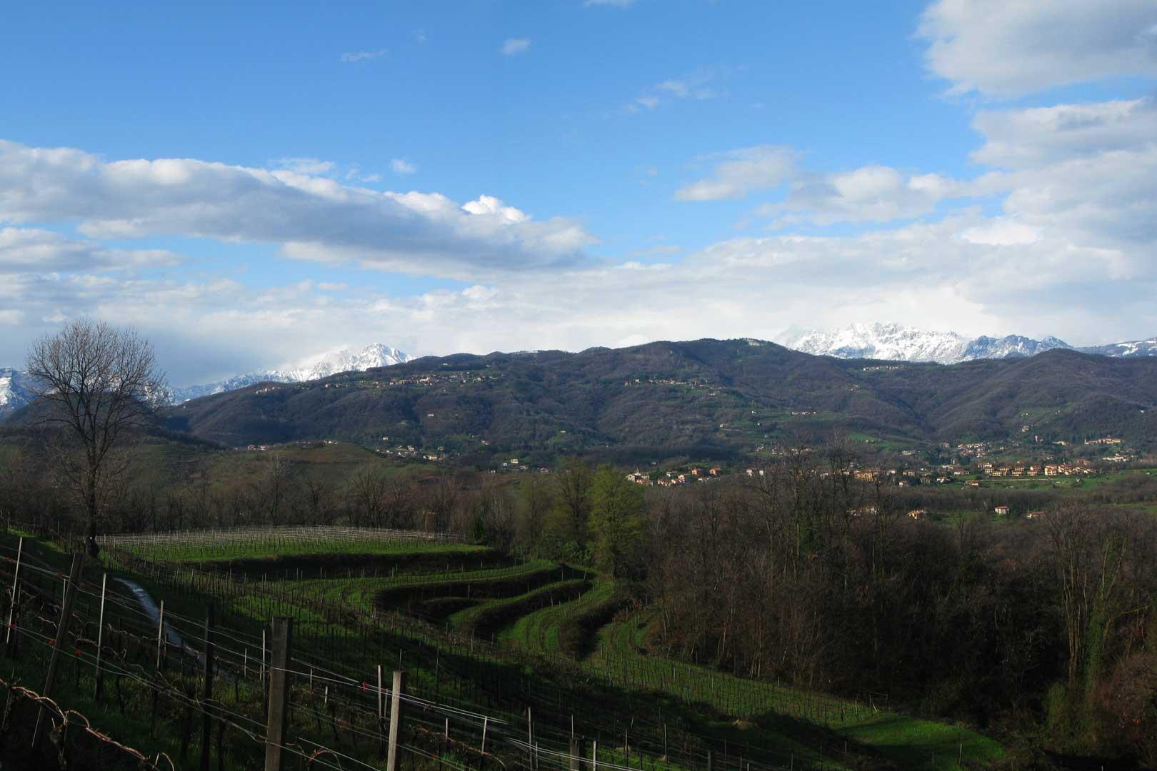 Terrazze di Montevecchia | Flawless Milano - The Lifestyle Guide