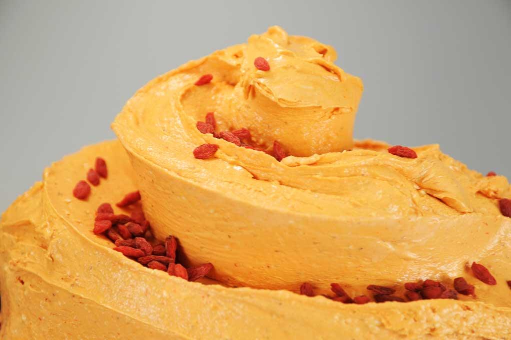 gusti-gelato-particolari-vanilla-gelati-italiani-goji