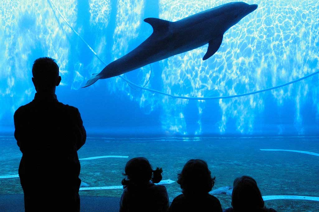Bagni Blue Marlin Nervi : La genova che non ti aspetti flawless milano