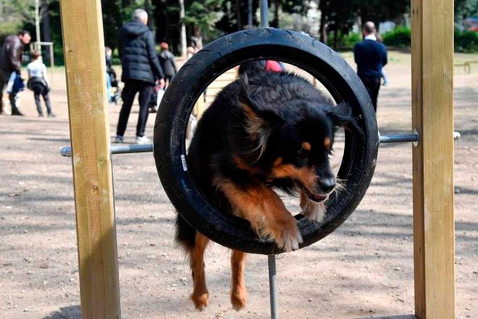 Mobility Dog Park - Milano