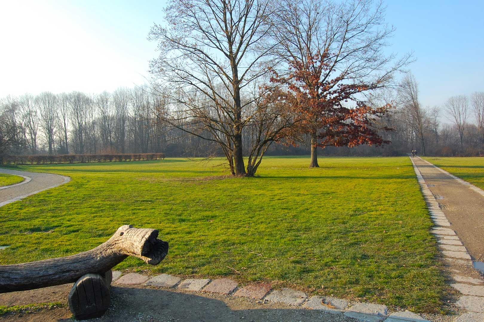 i-migliori-posti-dove-fare-picnic-a-milano-bosco-in-citta